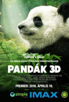 Pandák IMAX 3D poster