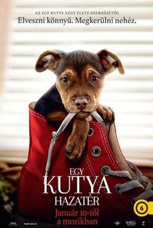 Egy kutya hazatér poster